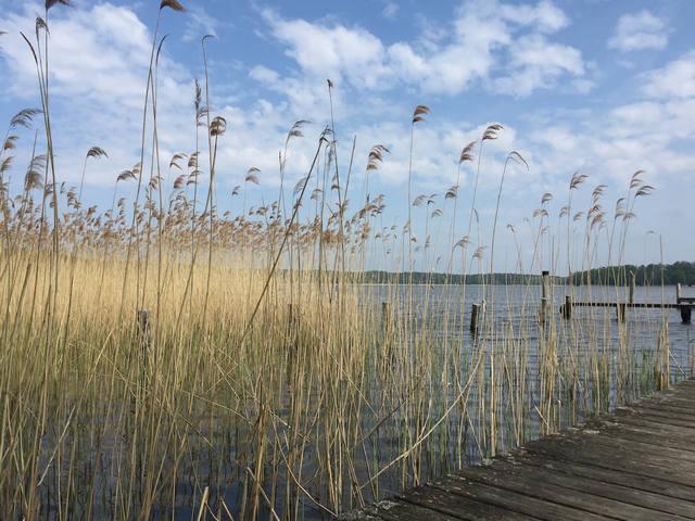 Mit Leichtigkeit zu mehr Gelassenheit: Buchingerfasten auf dem Bio-Fastenhof Behm in Brandenburg - Oktober 2020