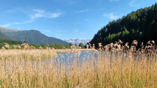 Fastenwandern im Vinschgau | Juni 2021