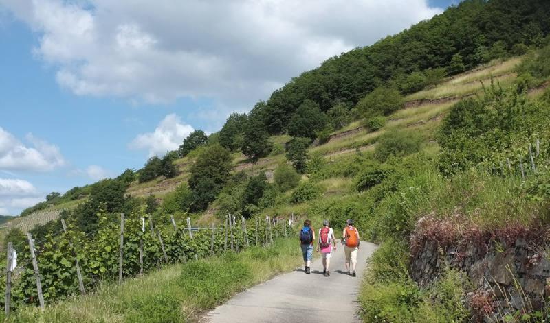 ErlebnisFasten und Wandern am Nationalpark Hunsrück im 4-Sterne Hotel MARIENHÖH, kleine Gruppe!